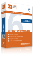 sysdev-laboratories-recovery-explorer-standard-for-windows-personal-license.png