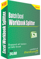 theskysoft-batch-excel-workbook-splitter-25-off.png