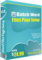 theskysoft-batch-word-files-page-setup-25-off.png