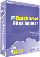 theskysoft-batch-word-files-splitter-25-off.png
